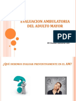 Evaluacion Funcional Ambulatoria Del AM