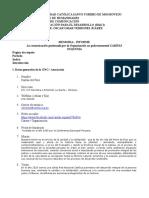 Memoria-Informe ONG.doc