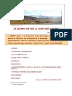 ARTICULO  APOLOBAMBA NINA 2.pdf
