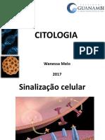 Sinalização Celular e Citoesqueleto