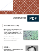 15. Citomegalovirus