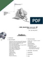 xss_for_fun-ingles.pdf