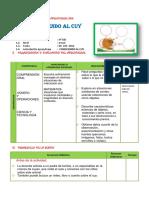 SESION EL CUY.docx