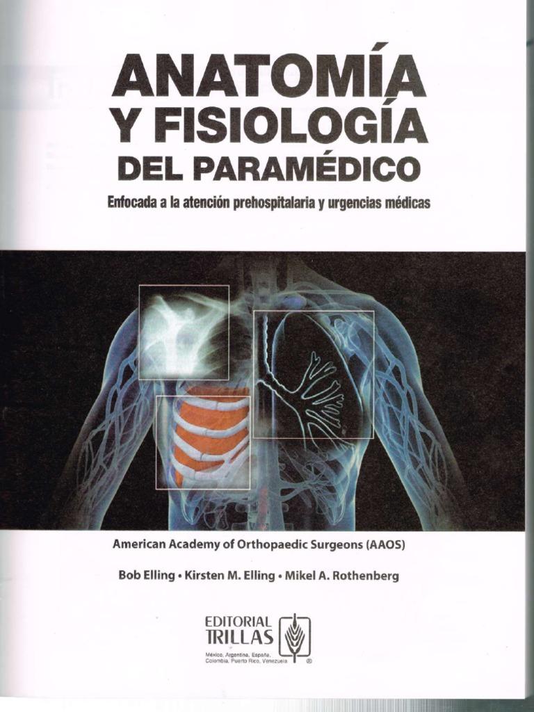 Encantador Anatomía Y Fisiología Revelaron 3.0 Ilustración ...