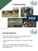 Dairy Farm Presentation