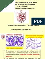 Antracis Clostridium Vibrio