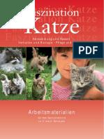 Faszination Katze