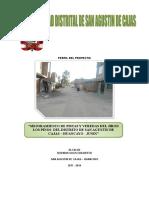 Proyecto Pavimento Jr Los Pinos