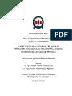 Cisternas_PF_Características acústicas de las vocales_2012.pdf