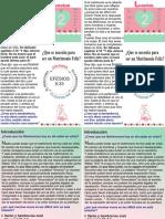 folleto para lareunion de matrimonios.pdf