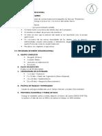 Plan de Diseño Organizacional