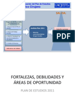 Fortalezas y Debilidades del Programa 11.pptx