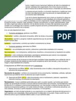 Resumen Practica Empresarial 2016