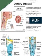 1. Anatomy of Larynx - Wai Sheng Xuan Batch 3 1101A11688