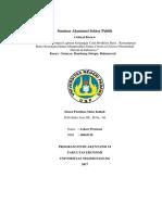 Tugas 3 Seminar Akuntansi Sektor Publik
