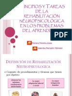Rehabilitación Cognitiva-expo.ppsx
