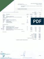 p.u.pdf