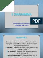 Diaframma.pdf