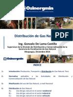 01_Distribución_de_gas_natural.pdf