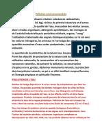 Poluarea mediului.docx