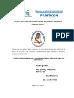 SISTEMATIZACIÓN-2017 TERMINADO.doc