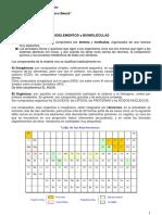 ficha_n2_biomoleculas._glucidos._lipidos._proteinas._acidos_nucleicos_copy.pdf