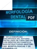 morfologiadental