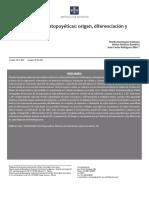 celulas-madre.pdf