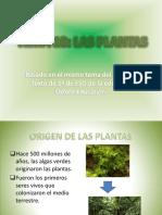 Tema10lasplantas Edoxford1eso 120907060936 Phpapp02