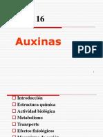 Auxinas