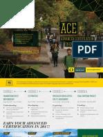AEI ACE 2017-18