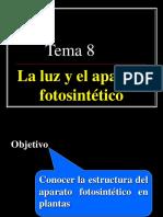 La_luz_y_el_ap.fotosintetico.ppt