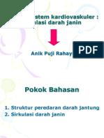 ANFIS  SIRKULASI DARAH JANIN.ppt