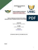 perfil de mercado cebolla cambray (1).docx