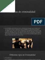 Formas de Criminalidad 2