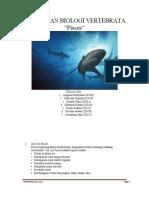 vertebrata x-3_2013.pdf