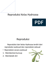 hydroproduction.pptx