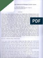 Full Paper.jenny Balaurung 2009