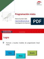 Programaciòn Lineal Mixta
