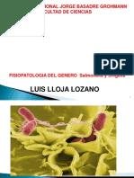Fisiopatologia Salmonella Shigella(Diapositiva).