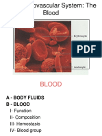 Cardiovascular Blood