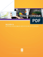 activos intangibles distintos plusvalia.pdf