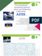 aster y sus caracteristicas