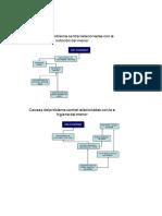ARBOL PROBLEMAS DERMATOSIS.docx