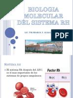 Biologia Molecular Del Rh (3)
