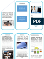 triptico editable (3).docx