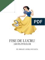 FISE DE LUCRU.doc