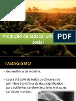 Produção de Tabaco - estudo de caso