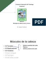 005 Miologia Cab,Cue,Tronco-pdf.pdf