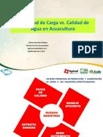 2Capacidad de Carga vs calidad del agua Jaime Guerrero.pdf